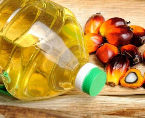 aceite-de-palma-e1500632825783-655x368